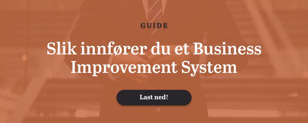 Guide til innføring av BIS